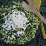 Cucumber Fennel Salad wih Mint and Feta