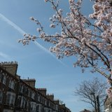 Springtime in London