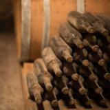 Ancient wine cellar at the San Donaci Winery