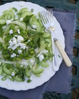 Cucumber Fennel Salad wih Mint and Feta