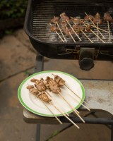 BBQ Pork Skewers