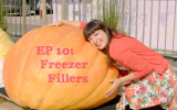 Giant Pumpkins and freezer fillers in my latest episode